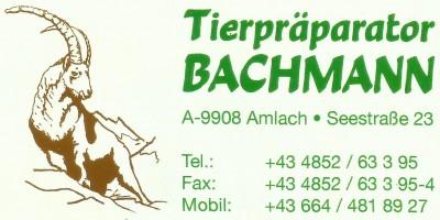 Tierpräparator Bachmann